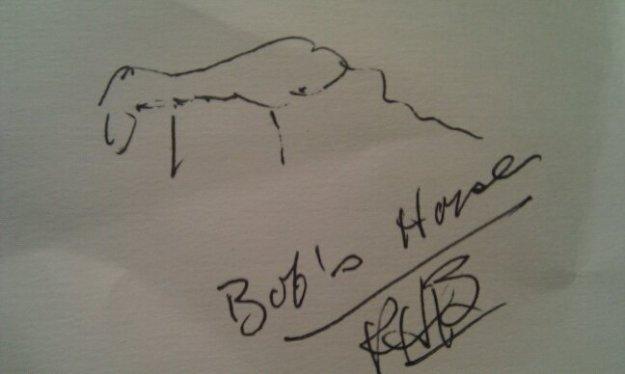 Robert Bruininks' Pretty Awful Giraffe Drawing