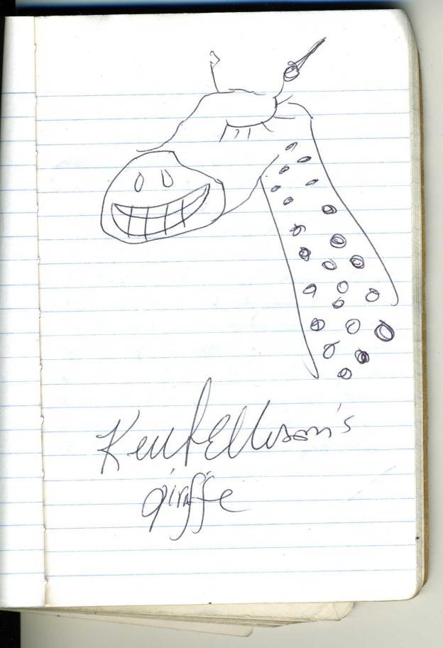 US Congressman Keith Ellison's Pretty Awful Giraffe