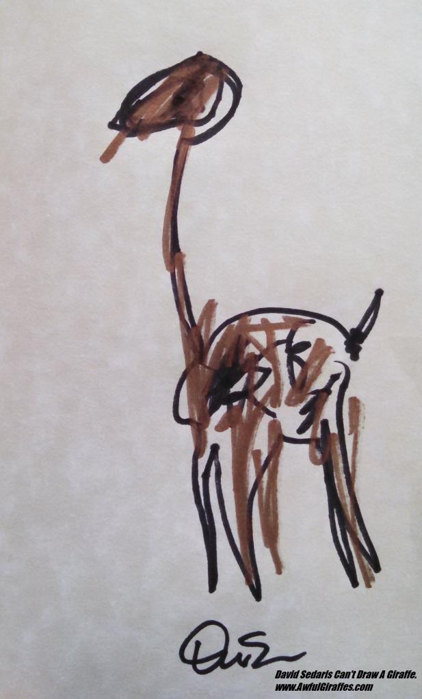 David Sedaris Giraffe Drawing